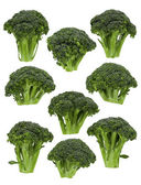 Broccoli Florets — Stock Photo