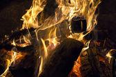 Burning bonfire — Stock Photo