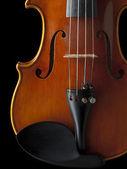 Close up shot of a violin — Stock Photo