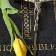 Bible with cross and tulip — Foto de Stock