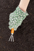 A hand cultivating the soil — Stock Photo
