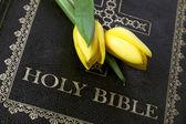 Tulipes jaunes avec une bible — Photo
