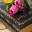 Pink and yellow tulip on bible — 图库照片