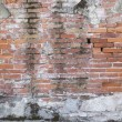 Abandoned brick wall — Stock Photo #18819319