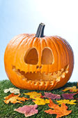 Jack o lantern portrait — Stock Photo