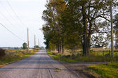 Road with trees on the side — Stock Photo