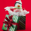 Close up image of gift box with snowman toy — Stock Photo #18823049