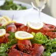 Lobster dish and wine — Stock Photo #18823997