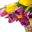 Pink and yellow flowers - Stock Photo