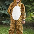 Stock Photo: A child in tiger costume