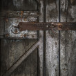 Wooden door with a rusty lock — Stock Photo