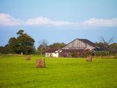 Barn in hay field — Stock Photo