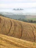 Tuscan Fields — Stock Photo
