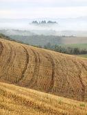 Tuscan Fields — Stock Photo