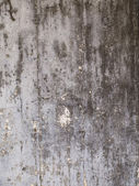 Vertical image of a concrete wall — Stock Photo
