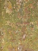 Vista de um velho muro — Foto Stock