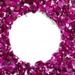 Circle frame of pink rose petals - Stock Photo