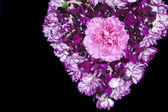 Heart shape flowers — Stock Photo