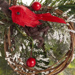 Pine bough with red berries and bird for christmas decoration — Stock Photo #19347079