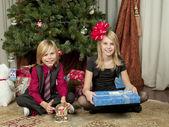 744 retrato de irmão e irmã, sentada no chão com dom bo — Foto Stock