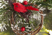 Pine bough with red berries and bird for christmas decoration — Stock Photo