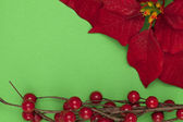 Christmas adornment — Stock Photo