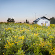 House in wild field — Stock Photo