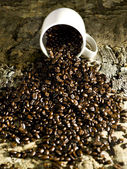 Coffee beans spill — Stock Photo
