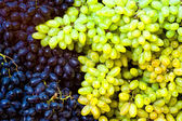 Grape bunches — Stock Photo