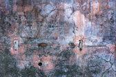 Kochi wall — Stock Photo