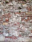 Mur de 100 ans d'âge — Photo