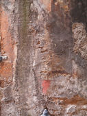 Lumpy grimey wall — Stock Photo
