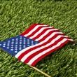 American flag — Stock Photo #19482887