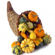 Cornucopiof gourds — Stock Photo #19485187