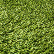 Fake grass — Stock Photo #19486571