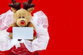 Christmas reindeer stuff toy — Stock Photo