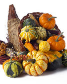 416 vegetables in a cornucopia — Stock Photo