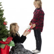 Side view of a brother giving christmas present to his siste — Stock Photo