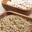 331 dried beans — Stock Photo #19847551