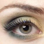 373 woman eye — Stock Photo #19849141
