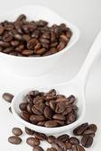 337 chicchi di caffè su un piatto — Foto Stock
