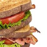 Постер, плакат: Blt sandwich
