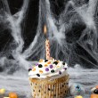 Cupcake on a spider web — Stock Photo #19866543