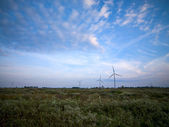 Power generating wind mill farm — Stock Photo