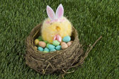 A basket with easter egg and bunny — Stock Photo