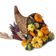 14 cornucopia on white — Stock Photo #19908033