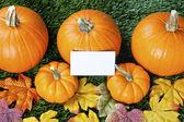 158 pohled na halloween dýně s transparent — Stock fotografie