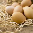 Royalty-Free Stock Photo: Brown eggs