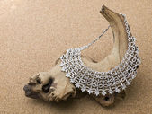 612 silver necklace — Stock Photo