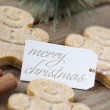 Image of a merry christmas tag with gingerbread candies - Stock fotografie